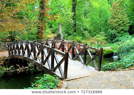 small bridge in woods Stock photo © glorcza