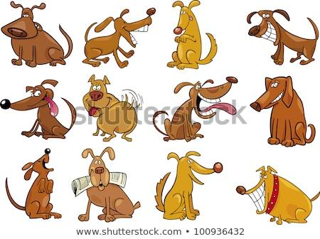 смешные · бежевый · собака · ПЭТ · Cartoon - Сток-фото © izakowski