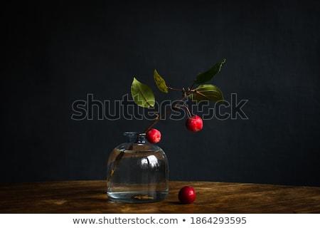 şişe su yeşil elma şube ağaç Stok fotoğraf © Alexan66
