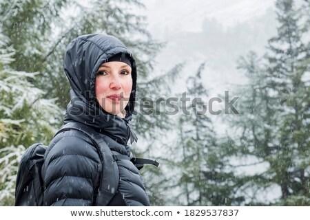forestales · principio · invierno · carretera · madera · naturaleza - foto stock © Pozn