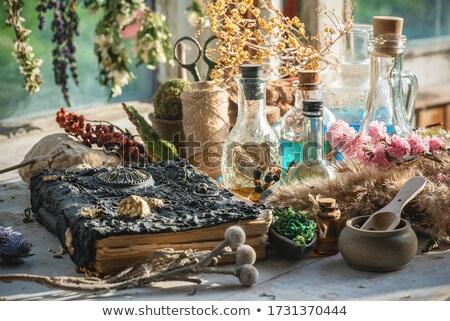 Witch's Recipes Stock photo © MilanMarkovic78