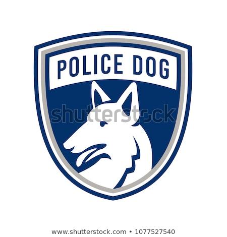 çoban · polis · köpek · çim · güvenlik · sonbahar - stok fotoğraf © patrimonio