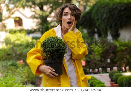 Shocked cute woman gardener standing over flowers plants in greenhouse holding plants Stock photo © deandrobot