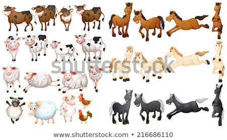 çok çiftlik hayvanları örnek arka plan sanat koyun Stok fotoğraf © colematt