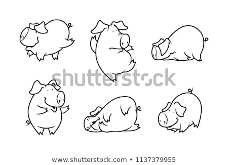 Cartoon porc illustration animaux Photo stock © cthoman