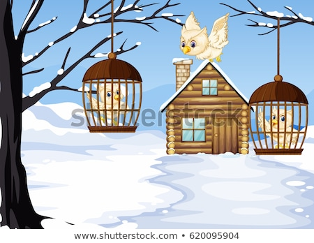 Winter scene with white owls in bird cages Stock photo © colematt