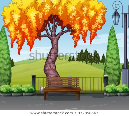 Natuur scène wilg boom weg illustratie Stockfoto © colematt