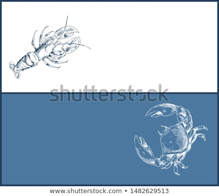 lobster and crab seafood double color graphic stock photo © robuart