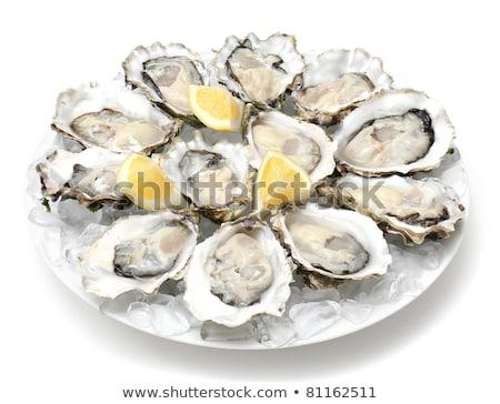 Fresco ostra prato ilustração natureza mar Foto stock © bluering