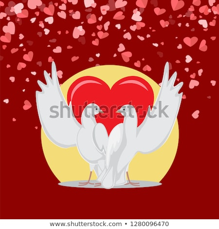 Embracing Doves with Raised Wings, Valentine Vector Stock photo © robuart