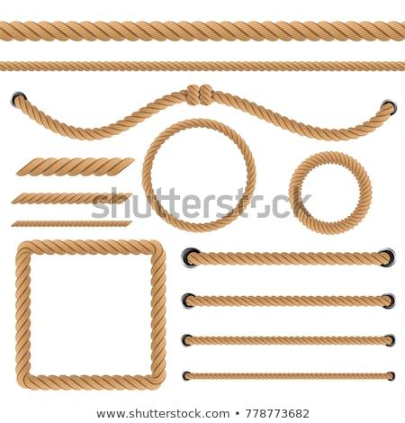 Vetor realista corda escove conjunto imitação Foto stock © sanyal