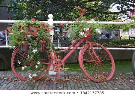 классический мнение старые Нидерланды ворот типичный Сток-фото © neirfy