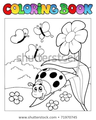 Libro para colorear flor feliz mariquita primavera libro Foto stock © clairev