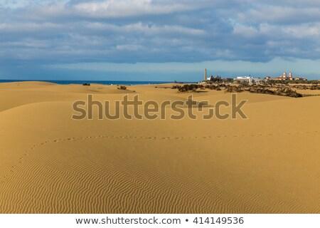 görmek · plaj · İspanya · deniz · feneri · deniz - stok fotoğraf © vapi