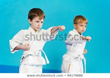Stockfoto: Twee · jongens · vechten · judo · worstelen · sport