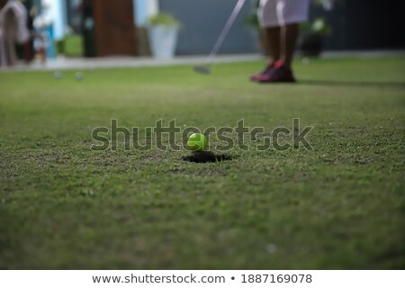 Happy golf player on geen. Stock photo © lichtmeister