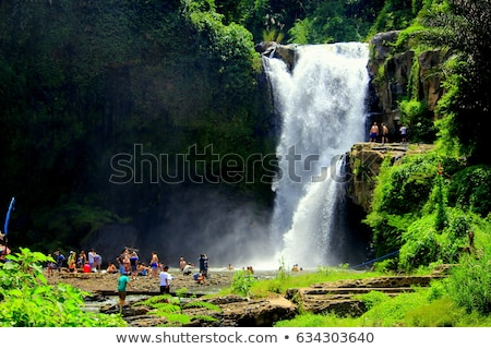 Wasserfall Wasser Landschaft Sommer grünen Stock foto © galitskaya