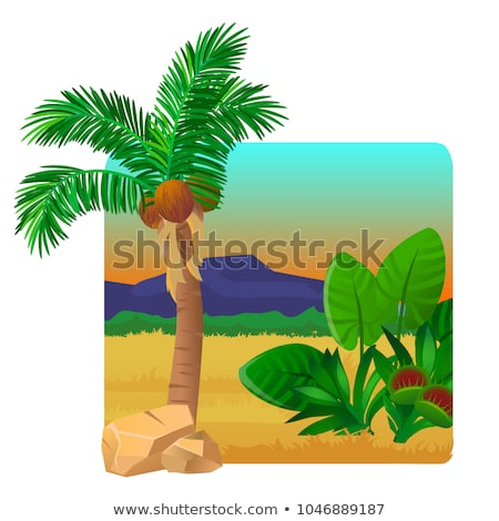 Picturesque landscape with a coconut palm tree, stones, carnivorous plants, flying bird. Sketch of a Stock photo © Lady-Luck