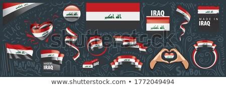 Vector ingesteld vlag Irak creatieve Stockfoto © butenkow