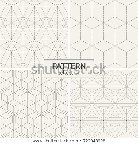 Vector seamless subtle lattice pattern. Modern stylish texture with monochrome trellis. Repeating ge Stock photo © samolevsky