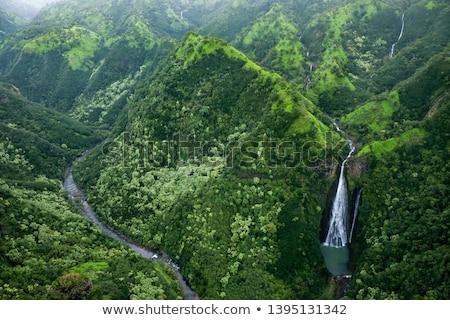 Manawaiopuna Falls in Kauai Stock photo © backyardproductions