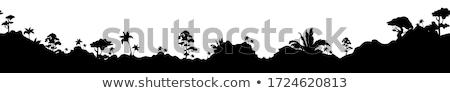 растительность закат Сток-фото © carloscastilla