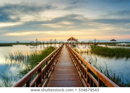 木製 橋 公園 青 水 空 ストックフォト © shihina