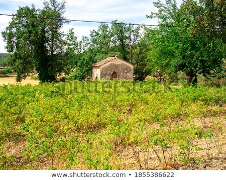 Pequeno capela campos outono arquitetura andar Foto stock © CaptureLight