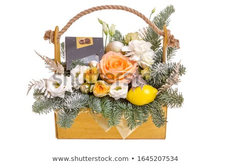 Christmas mand arrangement evergreen licht Stockfoto © pancaketom