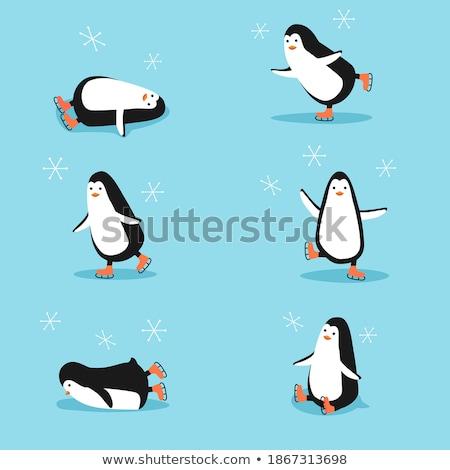 bonitinho · pinguim · gelo · patins · ilustração · natal - foto stock © adrenalina