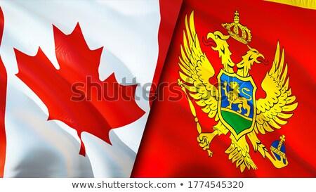 Канада Черногория флагами головоломки изолированный белый Сток-фото © Istanbul2009