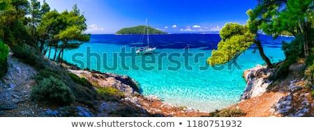 gyönyörű · trópusi · sziget · széles · látószögű · halszem · kilátás - stock fotó © shevtsovy