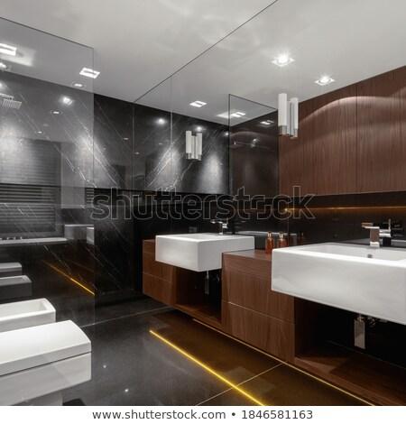 Clássico elegante casa vidro banheiro banho Foto stock © mady70