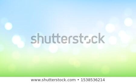 Természet fű homály zöld bokeh természetes Stock fotó © romvo