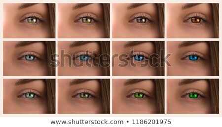 Female eyes of different colors with makeup Stock photo © ESSL