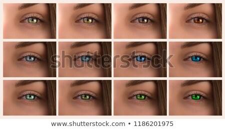 Feminino olhos diferente cores make-up conjunto Foto stock © ESSL
