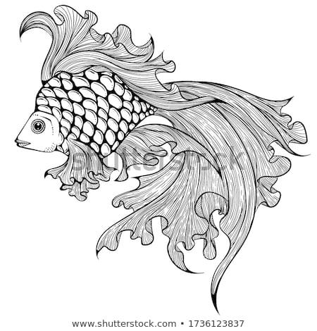 altın · balık · doğa · arka · plan · hayvanlar · siluet - stok fotoğraf © robuart