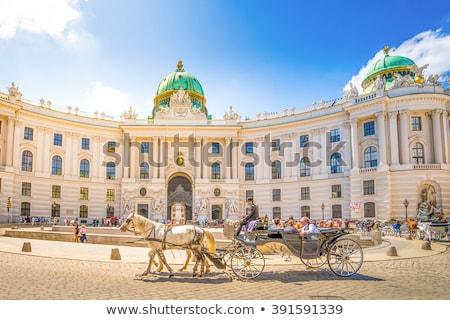 宮殿 · ウイーン · オーストリア · 馬 · 通り - ストックフォト © borisb17