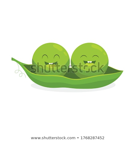Ripe green pods with peas icon isolated on white background, vector illustration. Stock photo © MarySan