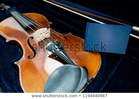 Complete Violin Viola Isolated on Black Stock photo © mkm3