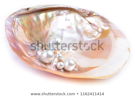 sinks and pearls Stock photo © yul30