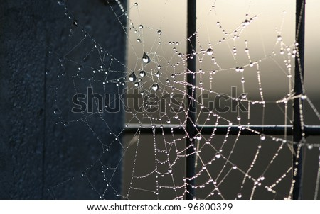 spider web and steel stock photo © njaj