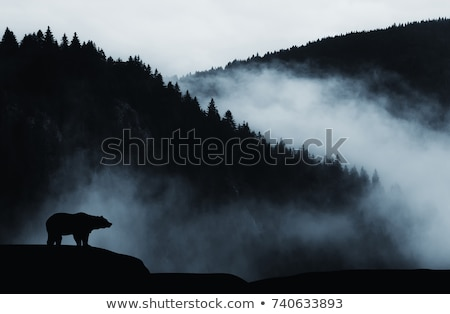 Berg Landschaft tragen schönen Wald blau Stock foto © saddako2