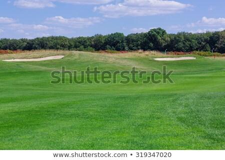 Perfect Wavy Grass On A Golf Field Foto d'archivio © Len44ik