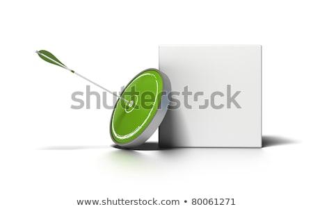 Advertising Concept on Green Target. Stock photo © tashatuvango
