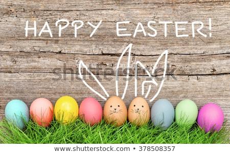 Kellemes húsvétot nyuszi mosoly boldog állat fog Stock fotó © Wetzkaz