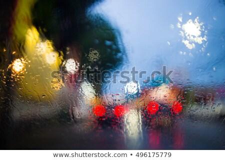 стекла фары мнение влажный Сток-фото © bezikus