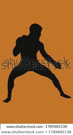 Karate játékos előad kickbox fitnessz stúdió Stock fotó © wavebreak_media
