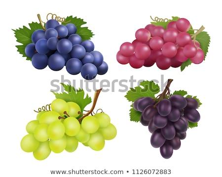 witte · druivensap · geïsoleerd · water · zomer · drinken - stockfoto © frescomovie