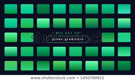 big set of soft gradients combinations swatches Stock photo © SArts